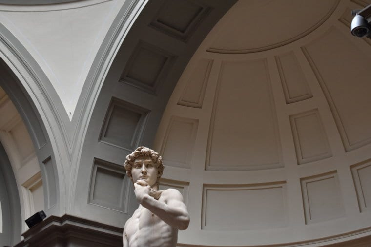 The face of the David in Florence