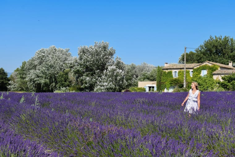 The Perfect 3-Day Travel Guide to Provence, France