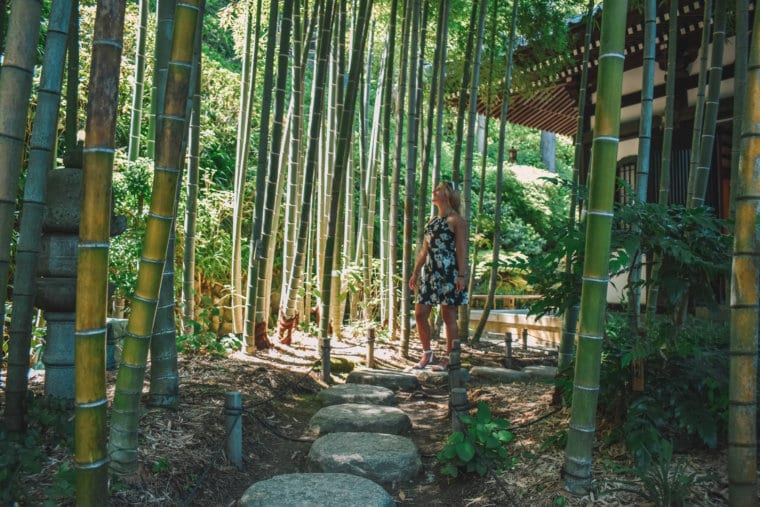 A woman walking through the bamboo forest in Kamakura during a day trip from Tokyo