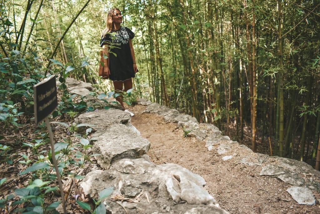 A woman exploring Austin's botanical garden on a solo trip