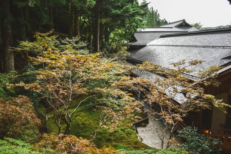 Staying in a Buddhist Temple in Mount Koya, Japan