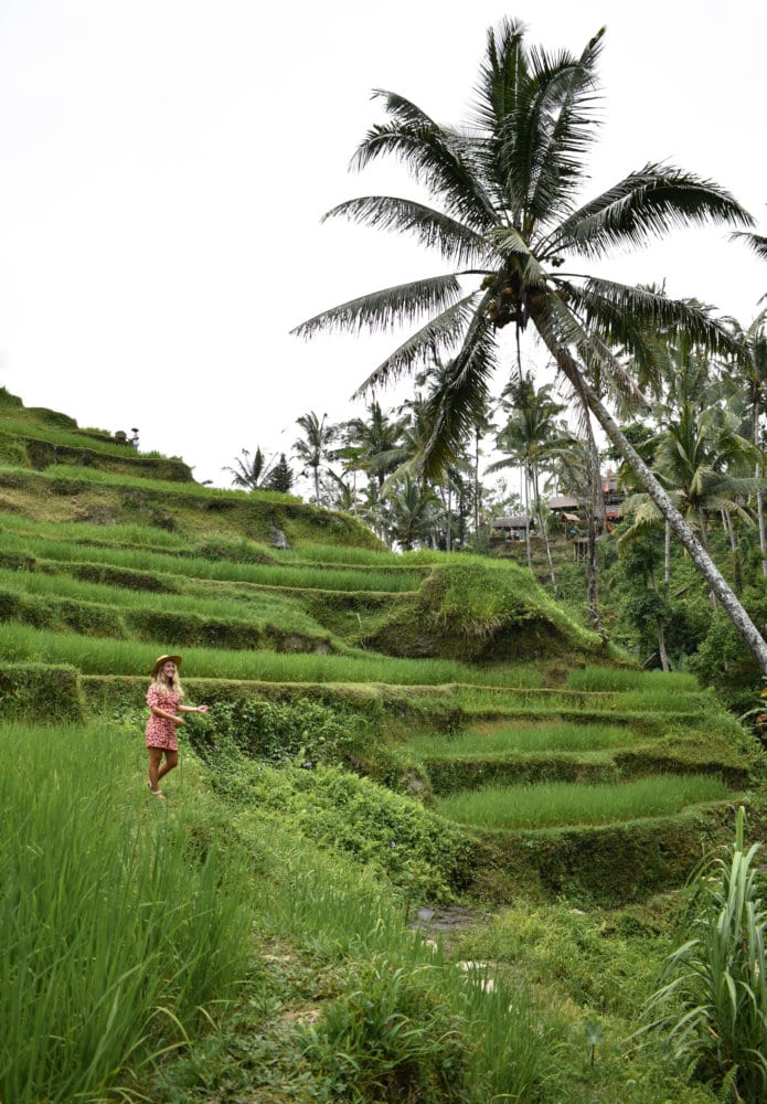 Highlights of Bali, Indonesia