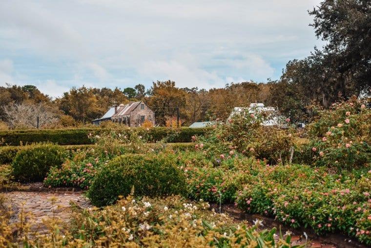 The gardens at Boone Hall Plantation