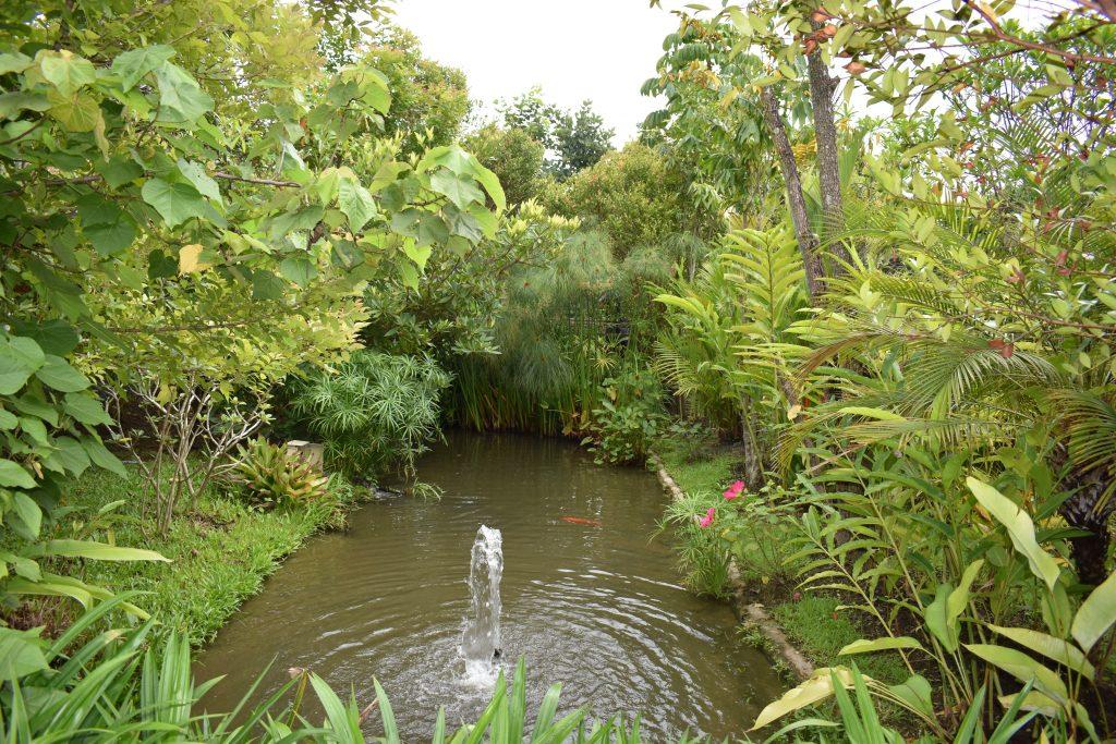 Gorgeous gardens in Chiang Mai, Thailand