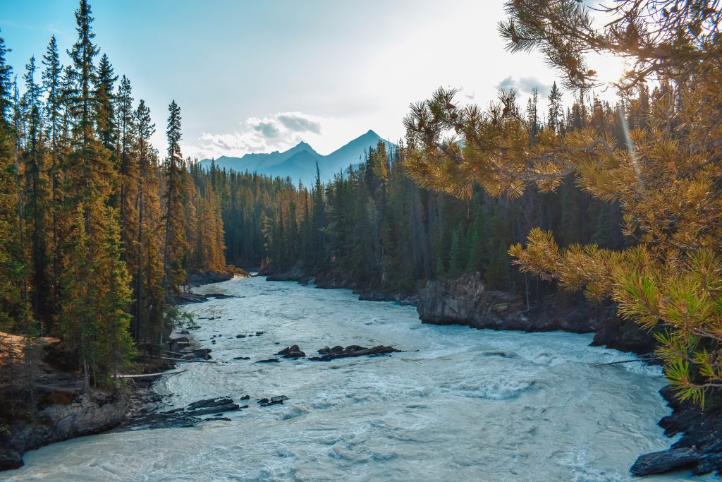 Yoho National Park – The Perfect Day Trip from Banff (With a Pit Stop in Peyto Lake)