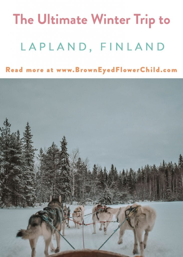 The Ultimate Winter Adventure in Lapland, Finland