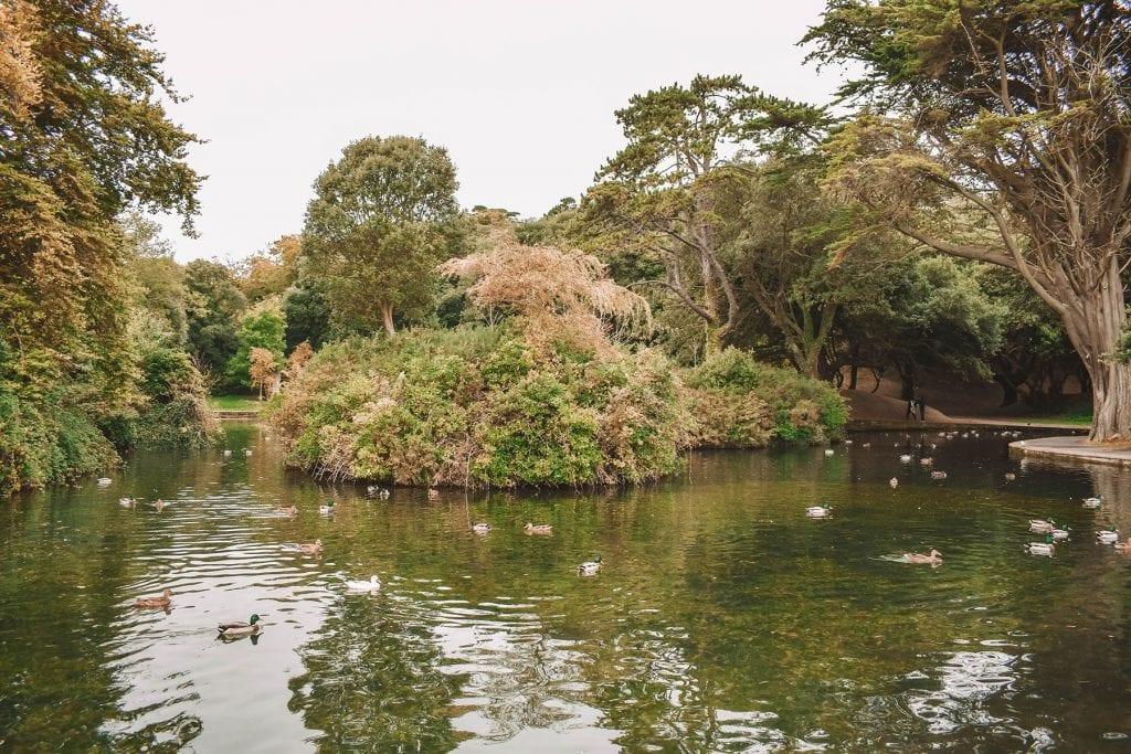 St. Anne's Park in Dublin