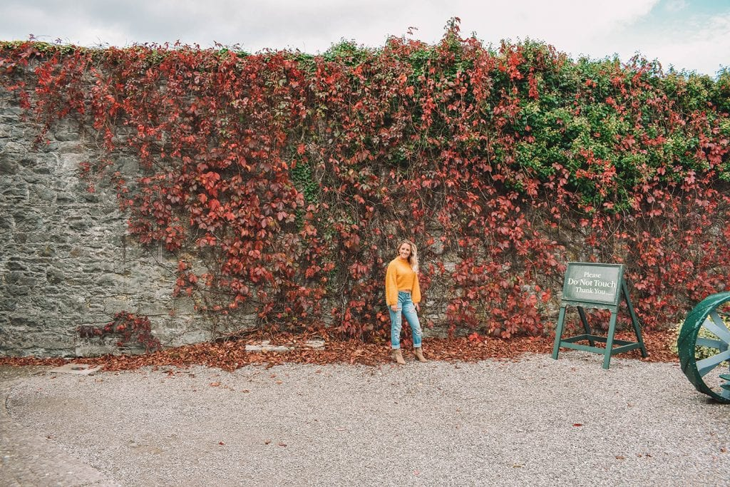A woman in front of an ivy wall in Ireland
