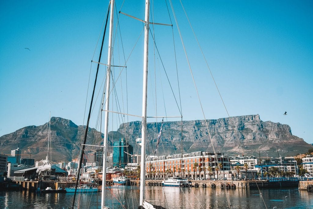 The Best Adventures in Cape Town, South Africa