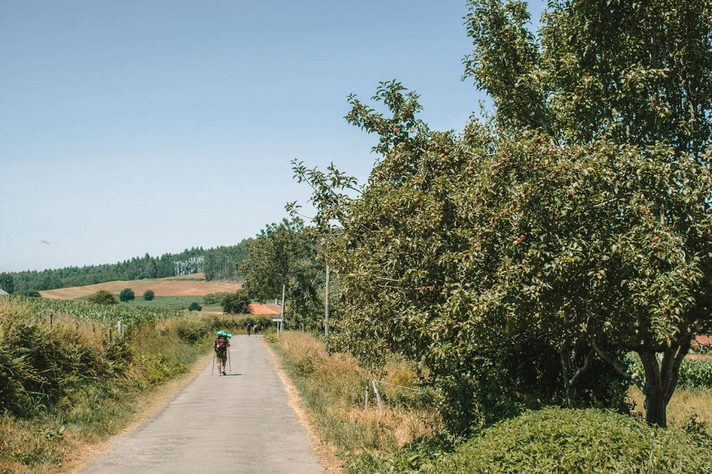 Pilgrims along the Camino de Santiago in Northern Spain