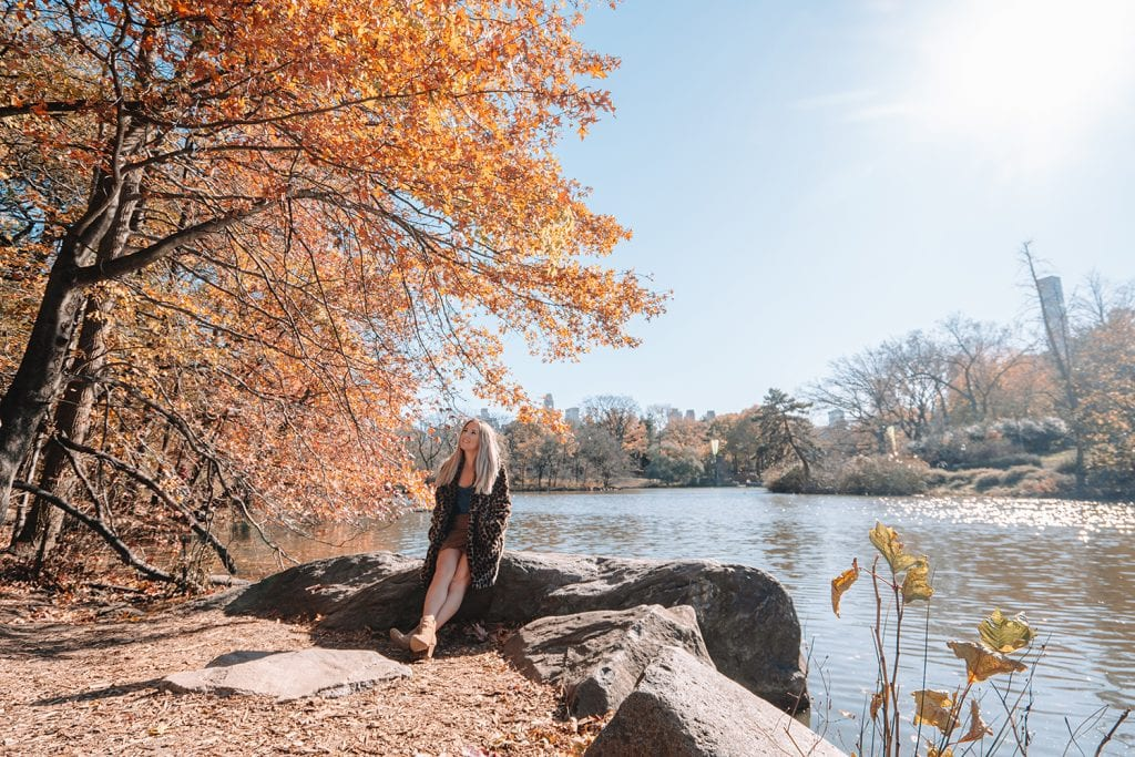 A woman enjoying the beauty in Central Park in New York City