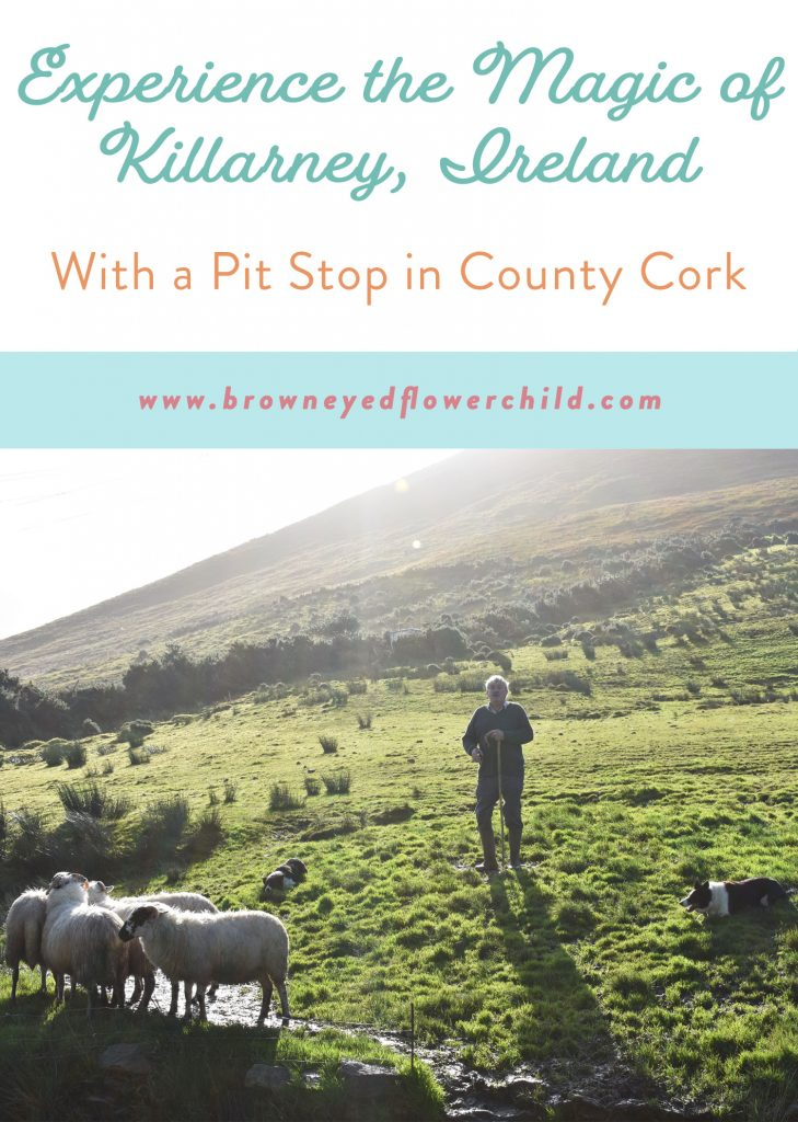 Everything to do in Killarney, Ireland