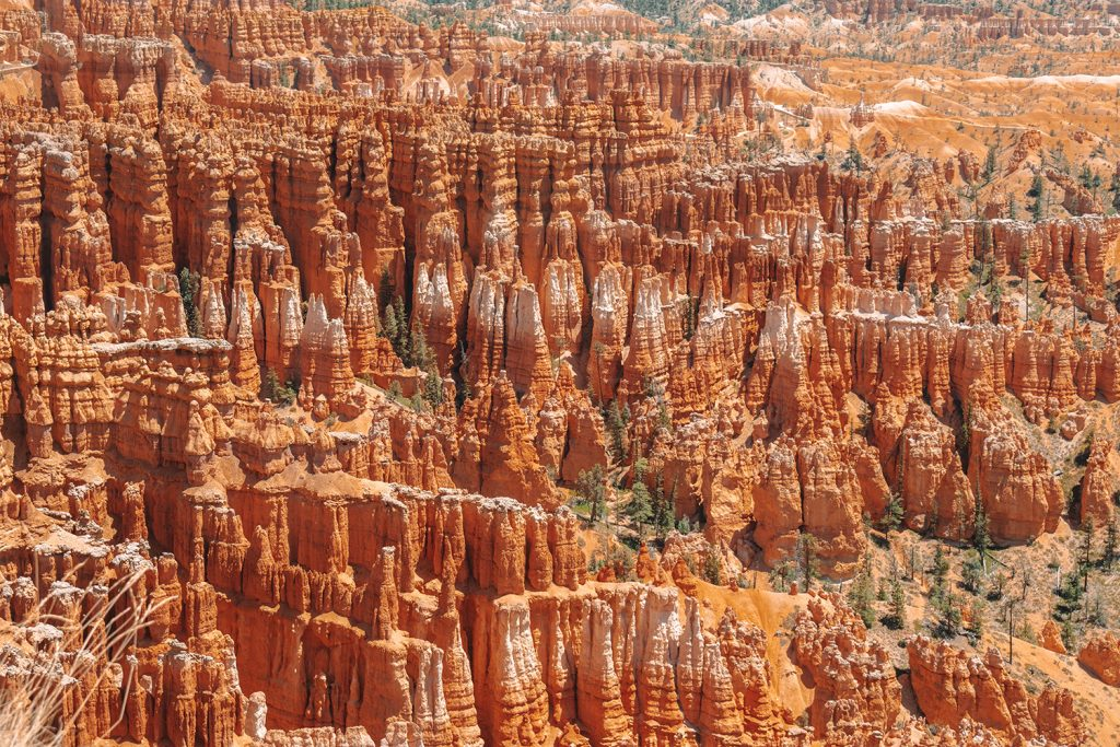 Colorful hoodoos from Bryce Canyon up close