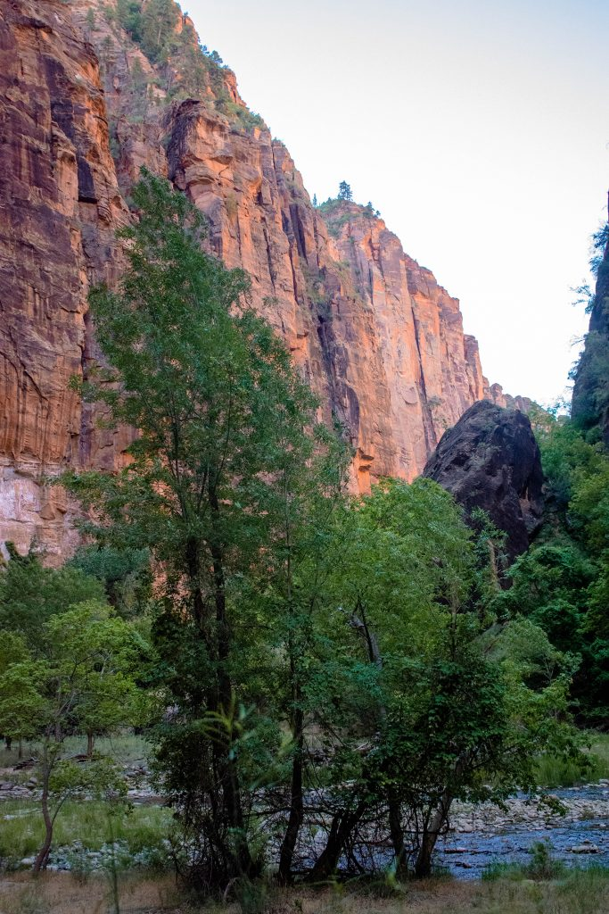 Red Rock cliffs in Zion National Park