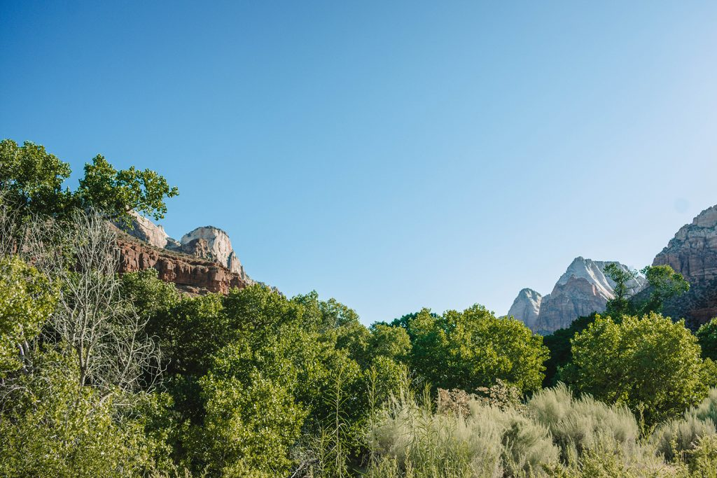 Views of Zion National Park