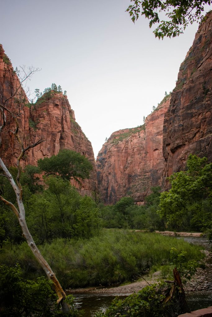 Zion Canyon from The Narrows