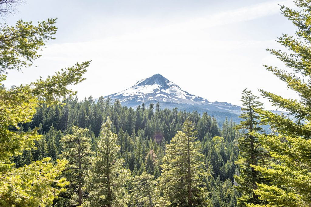 Views of Mount Hood, Oregon