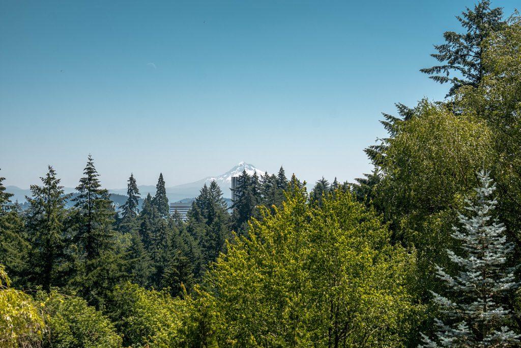 Mount Hood views from Portland city
