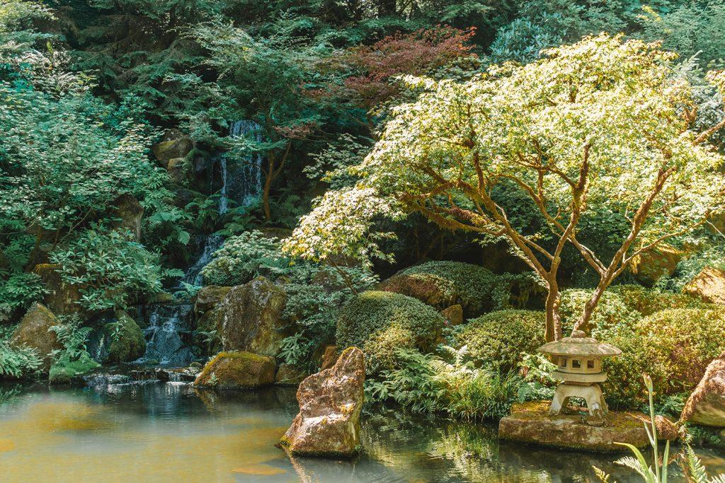 Beauty at the Portland Japanese Garden