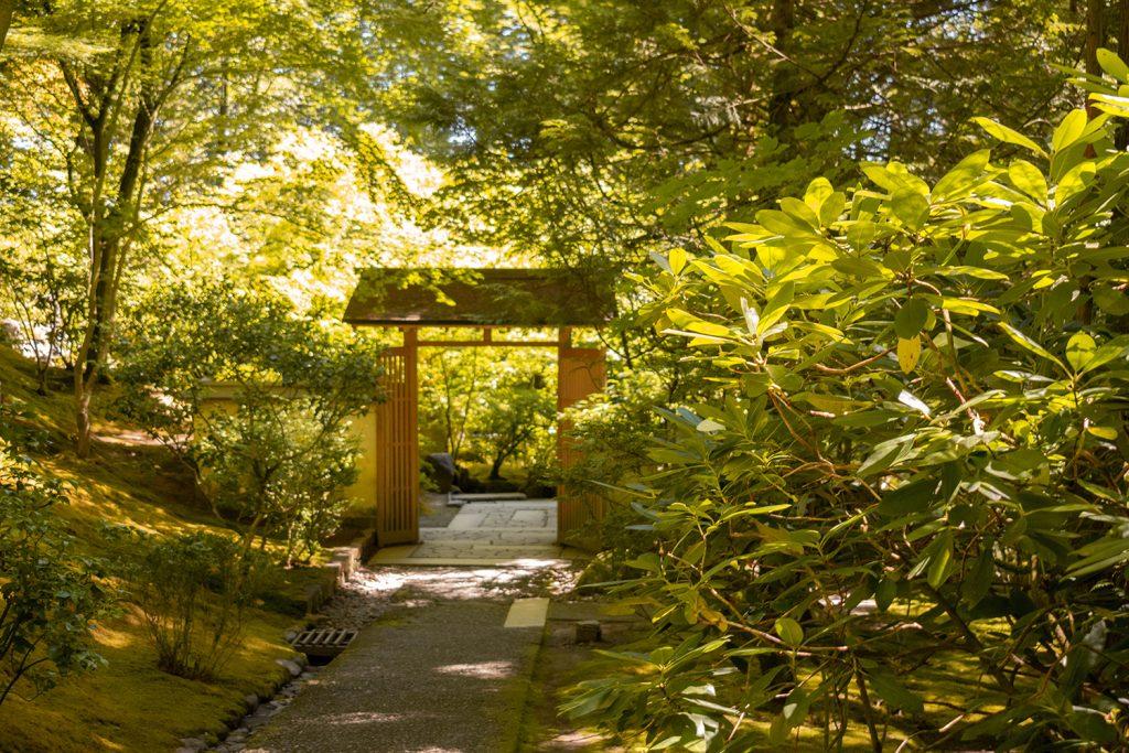 A torii gate at the Portland Japanese Garden