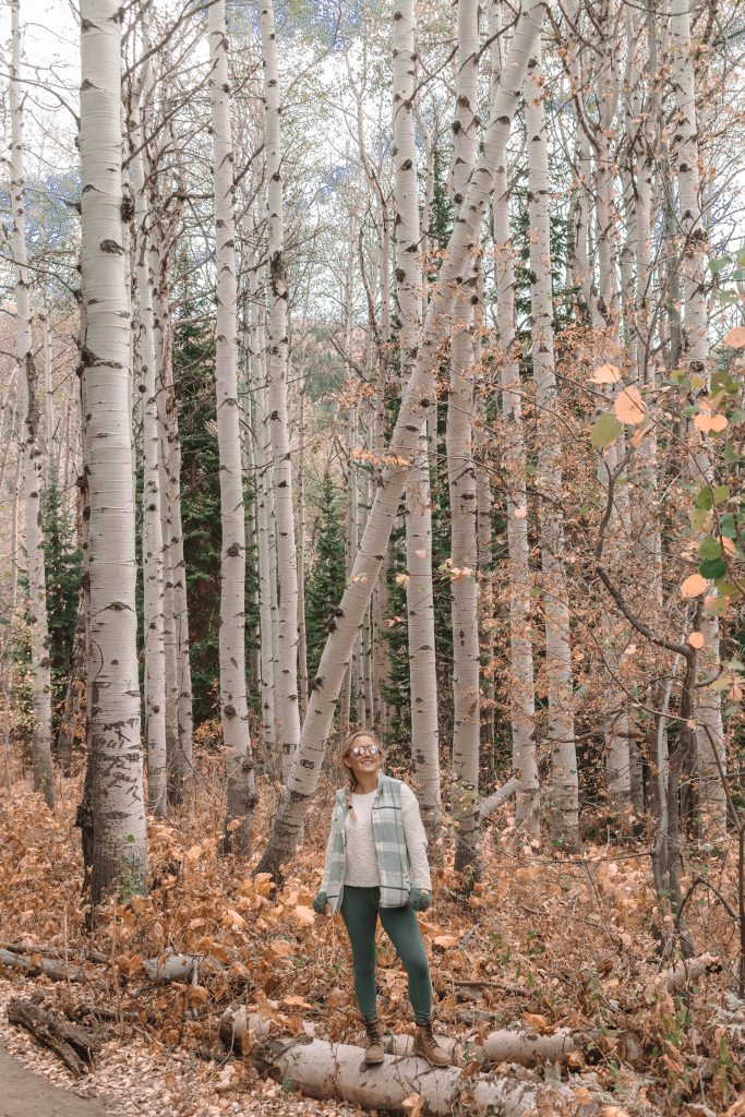 A woman hiking through an Aspen woodland during fall in Steamboat Springs, Colorado