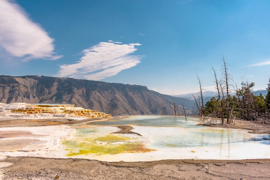 The pools of the Upper Terraces of Mammoth Hot Springs