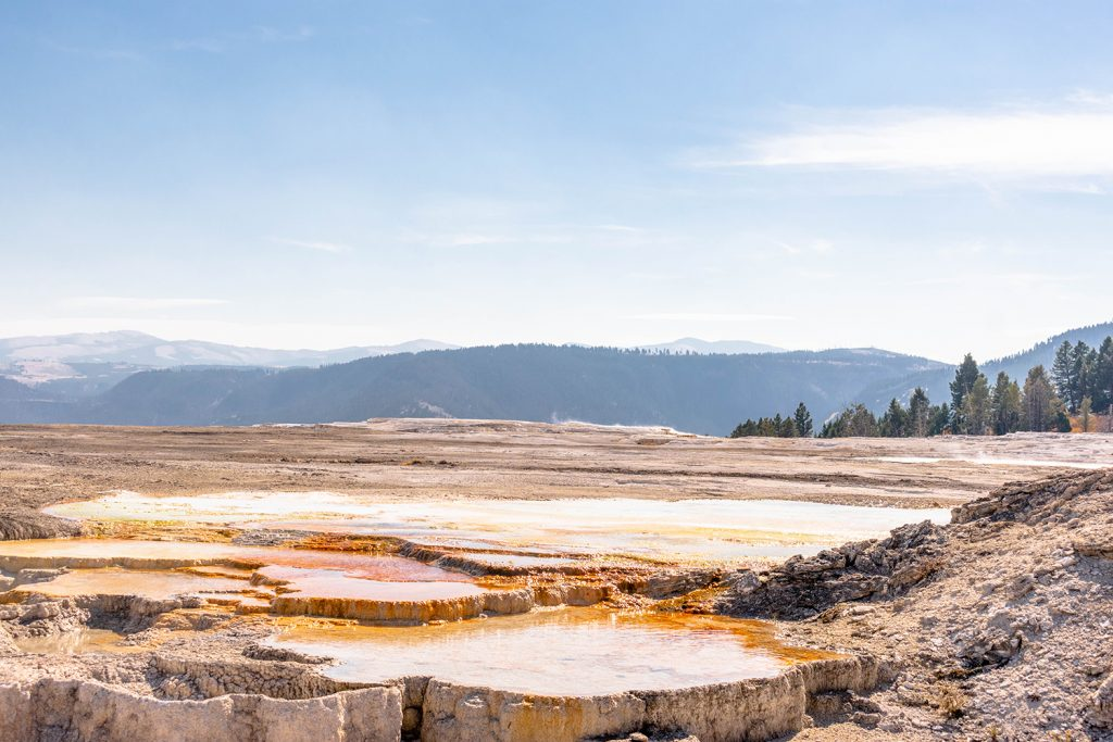 The Upper Terraces at Mammoth Hot Springs