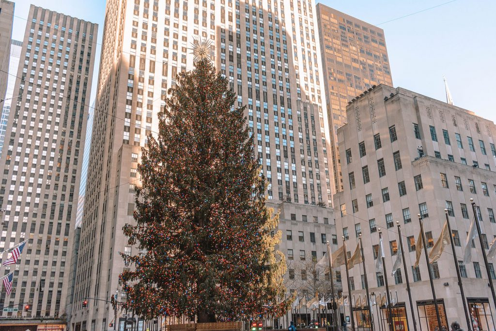 The Rockefeller Center Tree in NYC