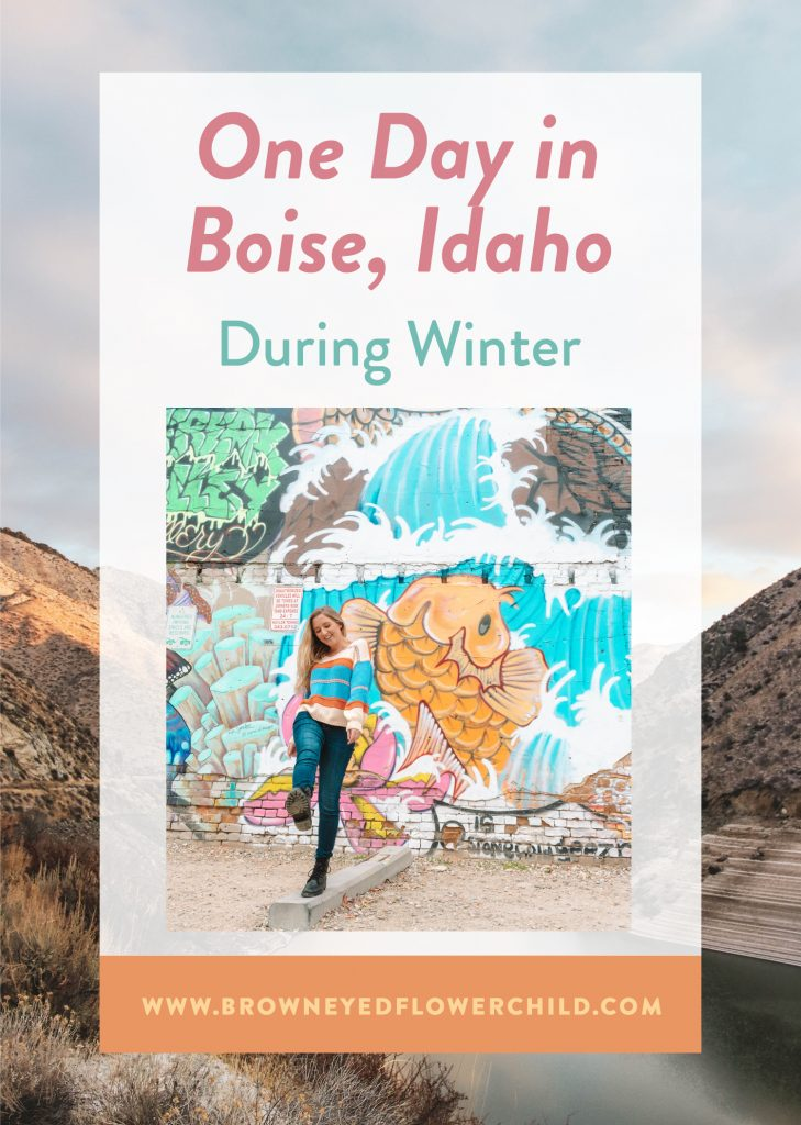 One Day in Boise, Idaho during winter