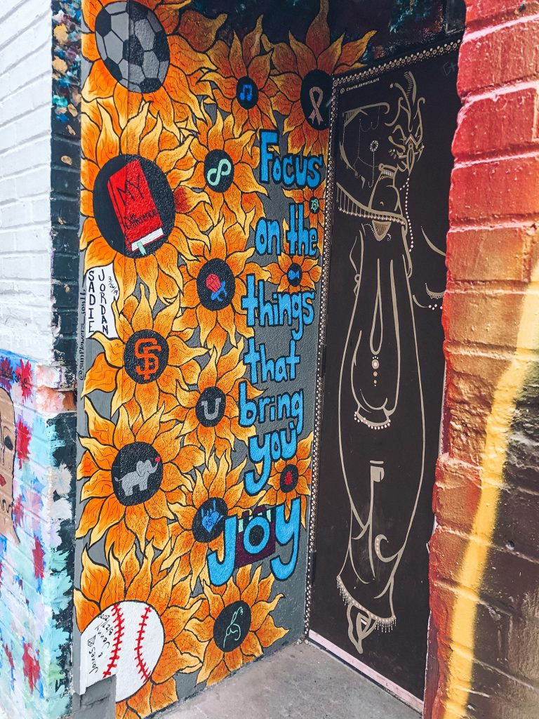 Beautiful murals at Freak Alley in Boise, Idaho