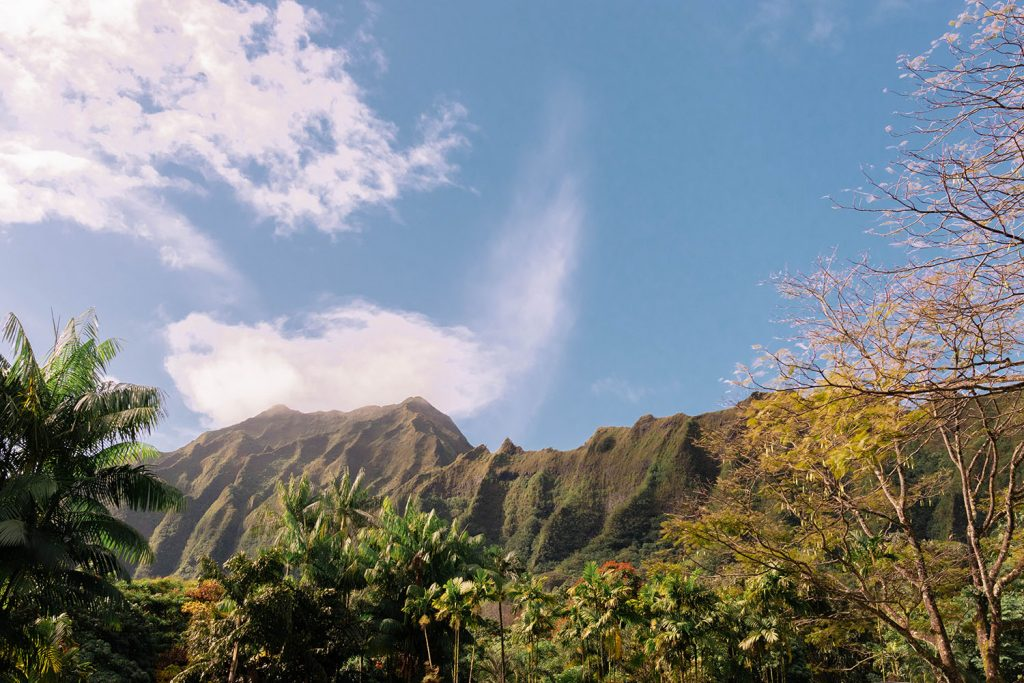 Exploring Ho'omaluhia Botanical Garden on Oahu, which is part of a 10 day Oahu and Maui itinerary