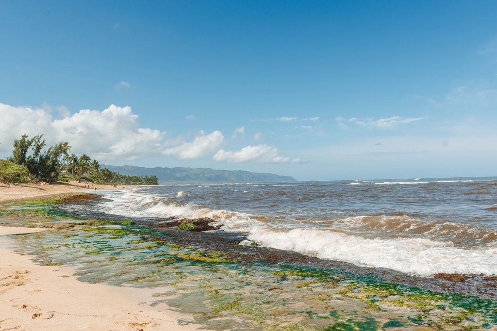 Exploring the North Shore - one of the top things to do on Oahu