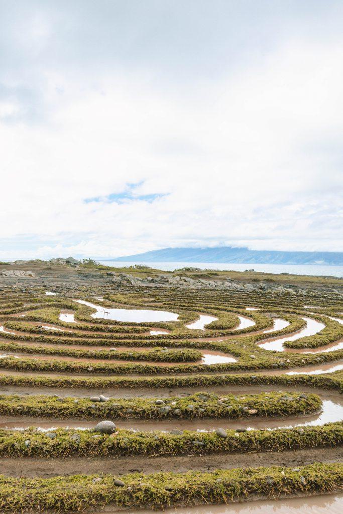 A labyrinth from Dragon's Teeth