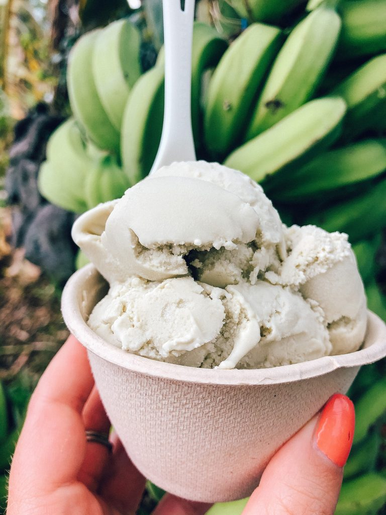Organic vegan coconut ice cream from Coconut Glens