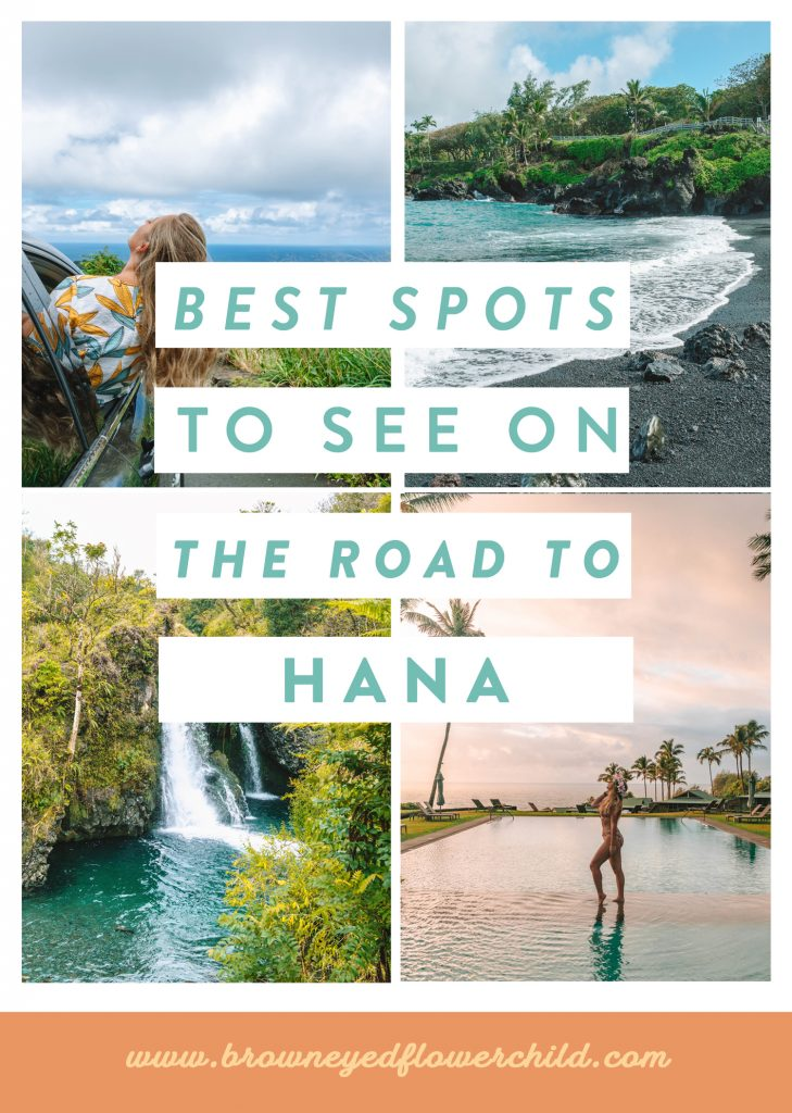 Best Spots to see on the Road to Hana.