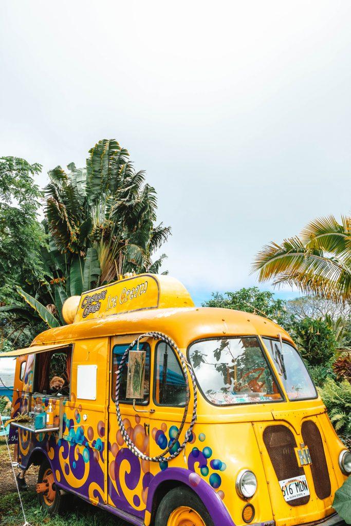 Coconut Glen's vegan ice cream on Road to Hana in Maui