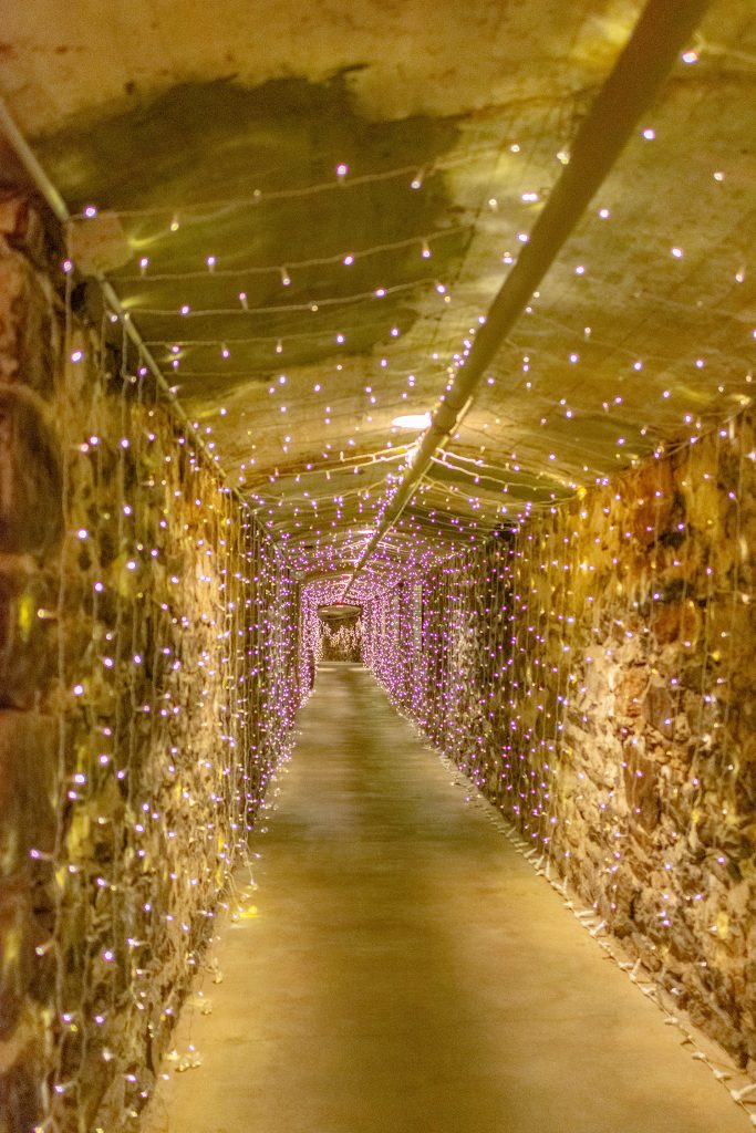 The wine cellars at Biltmore Winery in Asheville.