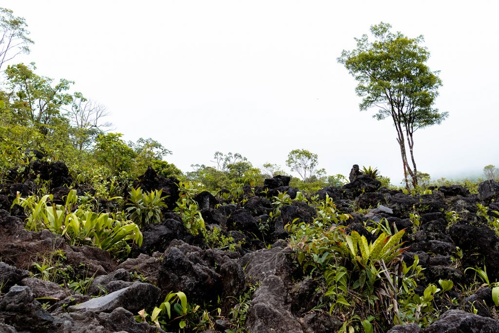 Lava rocks from Arenal Volcano National Park