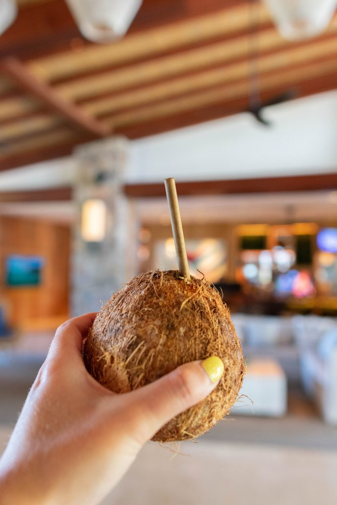 A small coconut to drink from Costa Rica