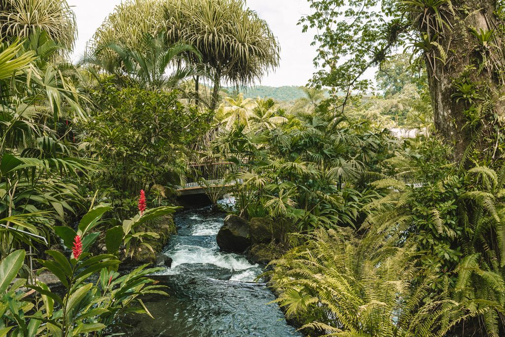 Tabacon hot springs in the La Fortuna and Arenal area