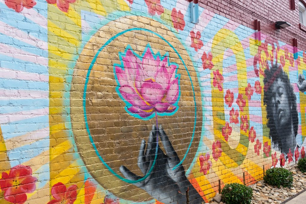 Lotus mural to see during one day in Charlotte