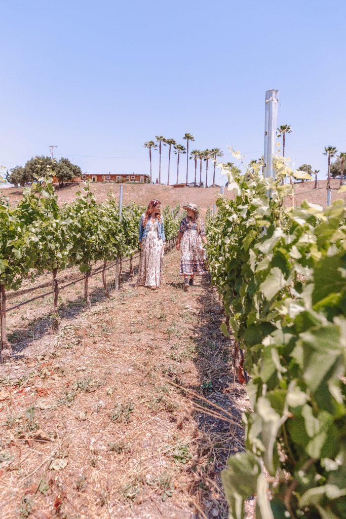 Two women walking through the rosé vineyards at Skyview Los Alamos in California during a Santa Barbara to San Francisco road trip