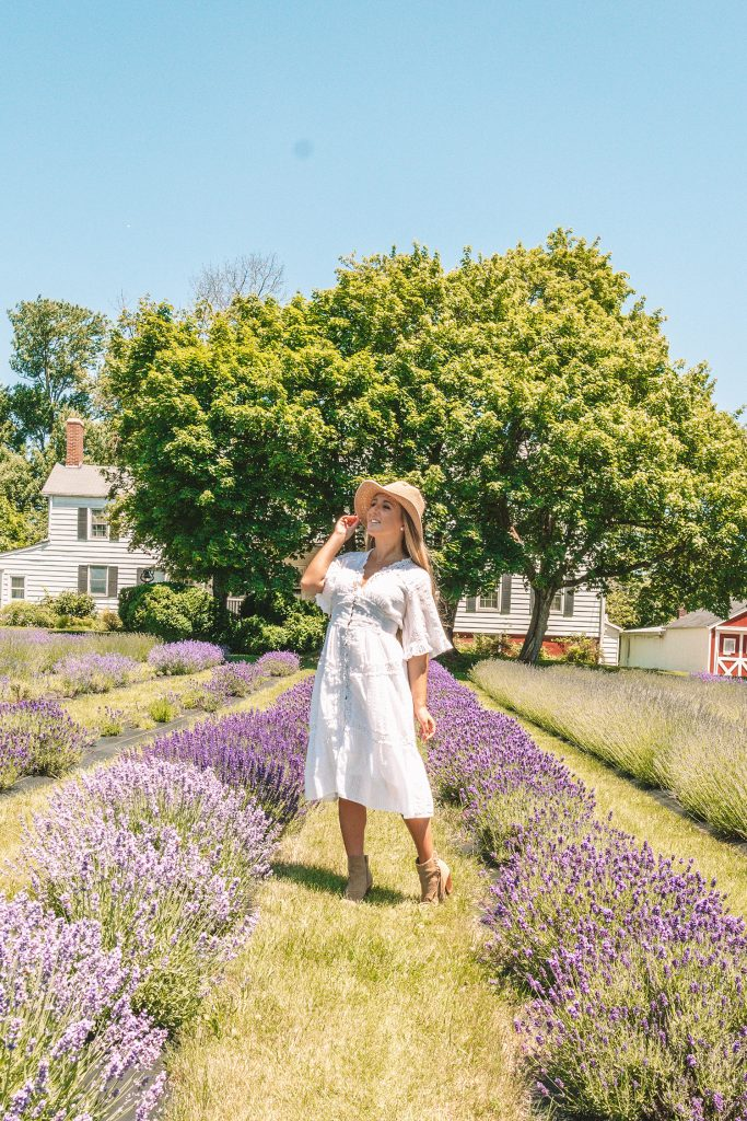 A woman at Hidden Spring Lavender Farm in Somerset County, NJ this summer