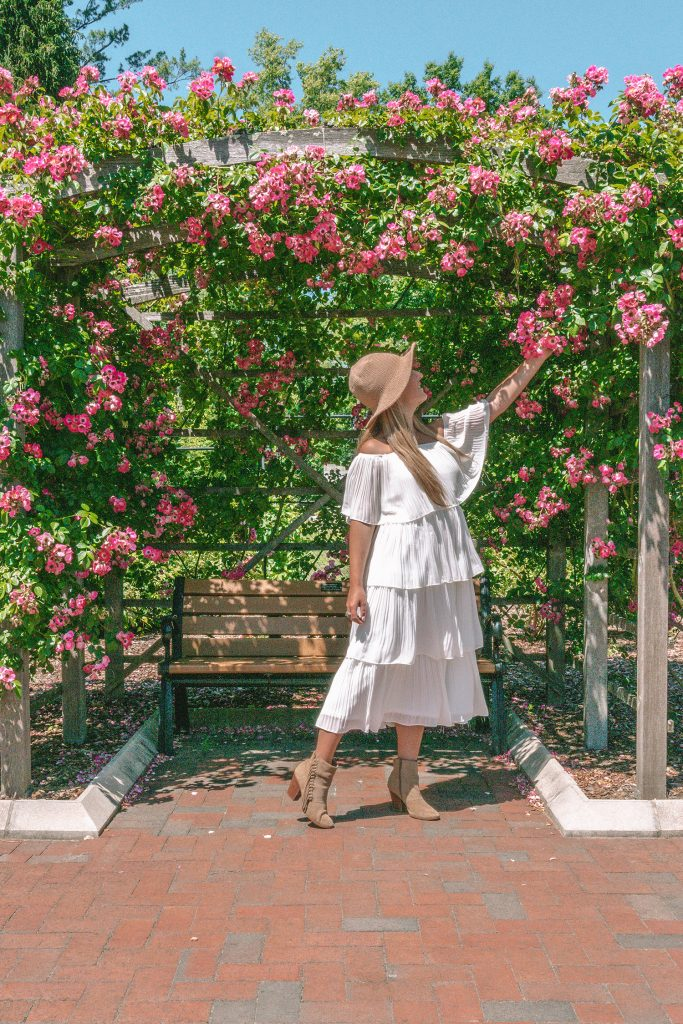 A woman enjoying the roses at Colonial Park Rose Garden in Somerset County this summer
