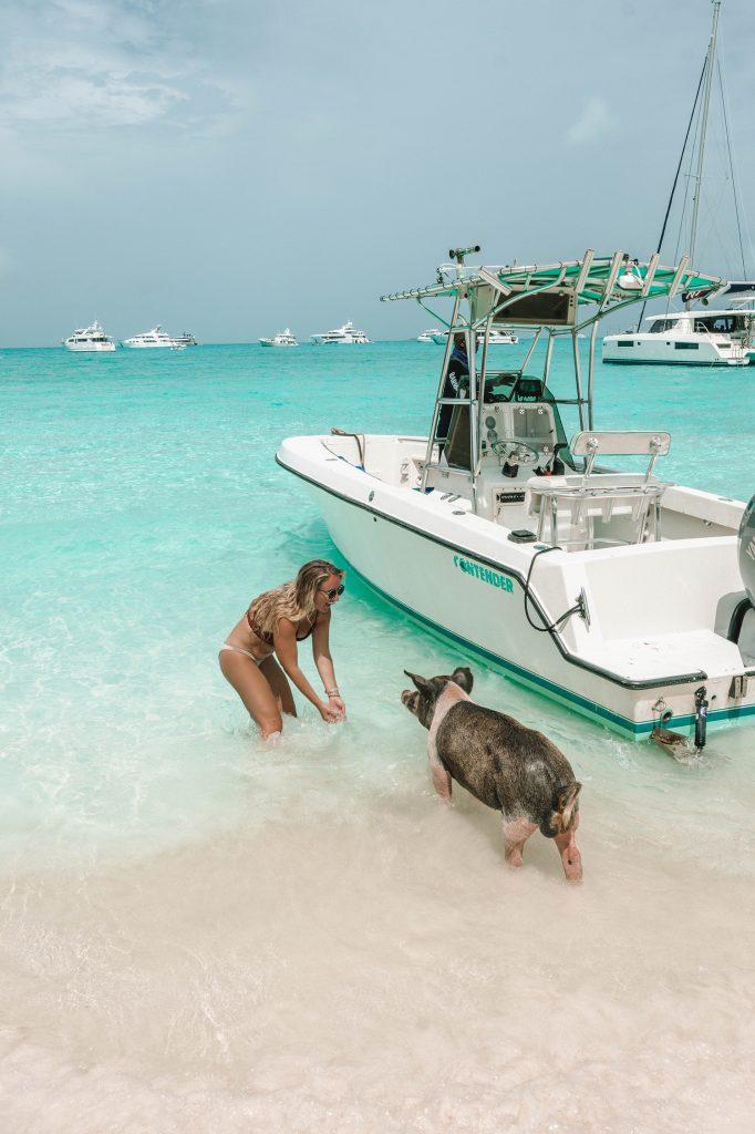 A woman having fun with a pig at Pig Beach