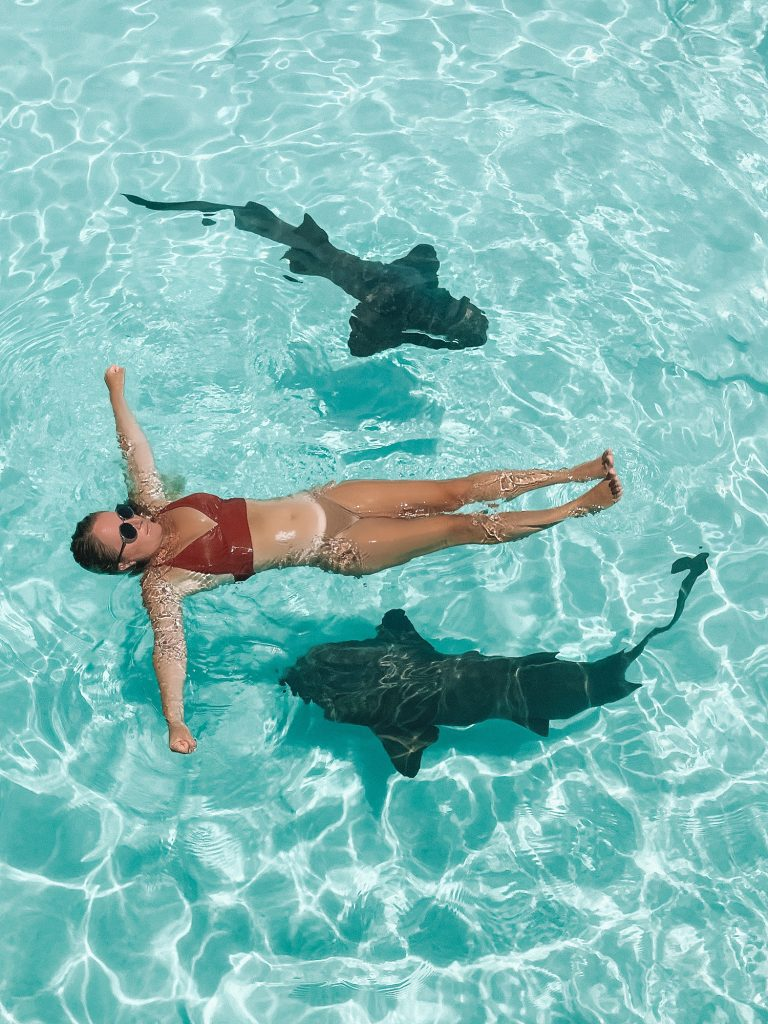 A woman floating with the sharks at Compass Cay in the Exumas