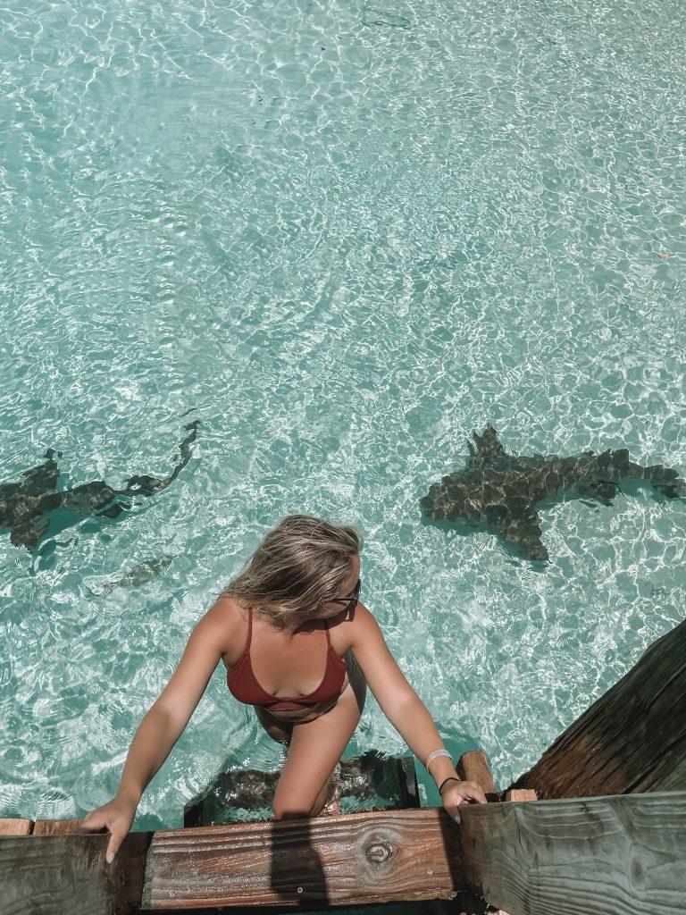 A woman looking at nurse sharks during a trip to Staniel Cay, Exuma, Bahamas
